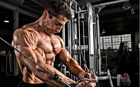 the-science-of-muscle-growth3